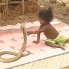 Kids-play-with-snakes